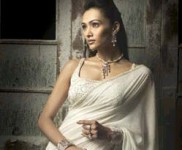 White saree with silver specks