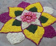 Rangoli Designs Pongal Decorations