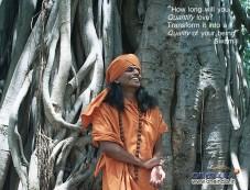 Paramahamsa Nithyananda Photos