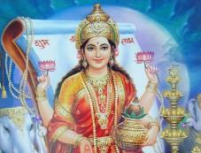 Vidya Lakshmi Photos