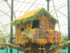Tree House at Lalbagh Flower Show 2012 Photos