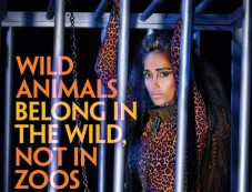 Jiah Khan Shows Her 'Wild' Side Photos