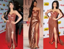 Shruti Hassan Shines In A Sailex Gown Photos
