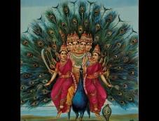 The Legend Of Lord Kartikeya Or Murugan Photos