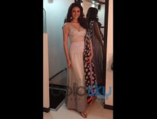 Aditi Rao Hydari's Stylish Appearances Grey Lehenga Photos