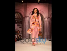 WIFW SS 2014 DAY 1 Designer Anupama Dayal Photos