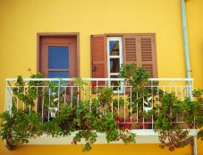 Decorate Your Balcony With Plants Photos