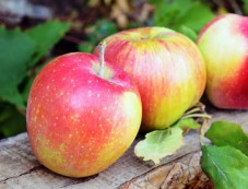 Foods To Control High Sugar Levels Apple Photos