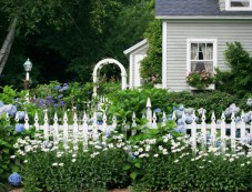 Fence Gardening Ideas For Winter Photos