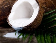 Have Coconut Oil Photos