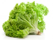 Lettuce Photos
