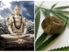 Why Lord Shiva Drinks Bhang? Photos