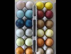 Eggs Photos