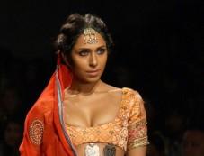WIFW 2014 Anupama Dhayal show Photos