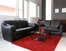 Dos & Donts To Maintain Leather Couch Photos