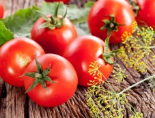Tomatoes Photos