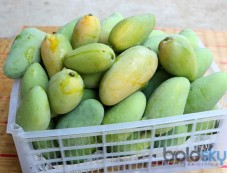 Easy Ways To Ripen Green Mangoes At Home Photos