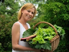 Four Steps To Grow Green Spinach At Home Photos
