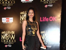 Life ok Awards 2014 Photos