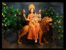 9 Special Colours For 9 Special Days Of Navratri Photos