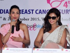 Malaika Arora And Lisa Ray Attend Indian Breast Cancer Survivors Conference Photos
