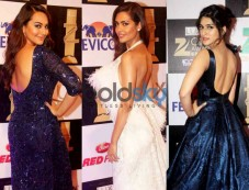 Most Memorable Looks From The Lux Zee Cine Awards 2016 Photos