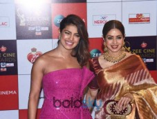 Red Carpet Of Zee Cine Awards 2018 Photos