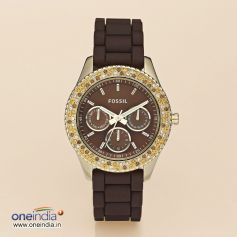Fossil Autumn Winter Collection