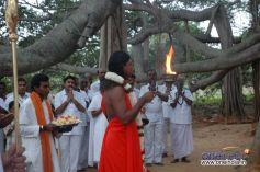 Aarti at  Banyan Tree