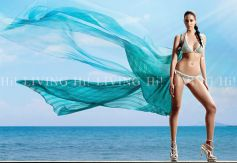 King Fisher Calender 2012 Models