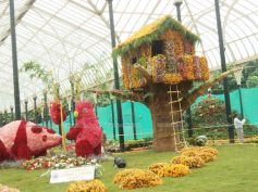 Pandas at Lalbagh Flower Show