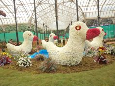 Flower arrangements in the shape of Duck