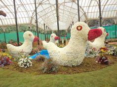 Flower arrangements in the shape of Duck