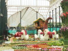 Main attractions of the Flower Show