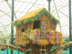 Tree House at Lalbagh Flower Show 2012