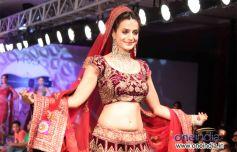 Ameesha Patel Ramp Walk