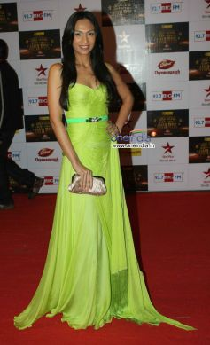 Shamita Singha At Big Star Entertainment Awards 2012