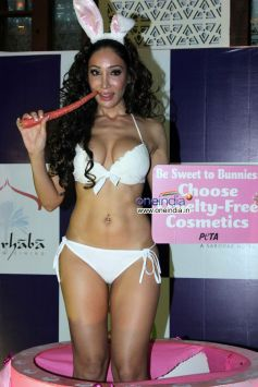 Sofia Hayat poses during her birthday photoshoot