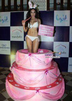 Sofia Hayat Birthday Bash 2012