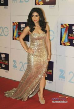 Zoa Morani at Zee Cine Awards 2013 Red Carpet