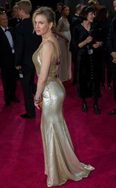 Renee Zellwege at 2013 Oscar Awards  Function