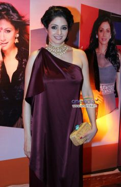 Sridevi at HT Mumbai's Most Stylish Awards 2013
