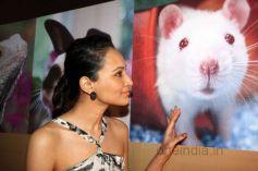 Dipannita Sharma PETA promotes Extra-Vegan-Za at Indian Luxury Expo