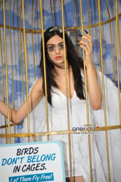 Adah Sharma says Birds Don't Belong in Cages