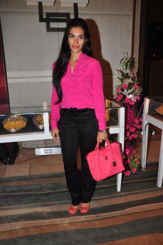 Celebs at Gemfields RioTinto Jeweller India Awards 2013