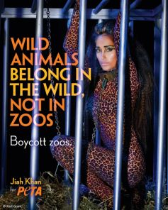 Jiah Khan Shows Her 'Wild' Side