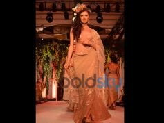Beaded Beige Saree