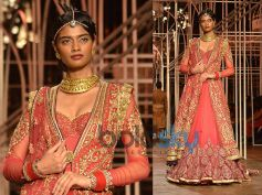 Sheer Anarkali Gown