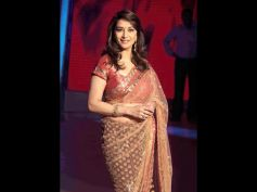 Sheer Brown Saree