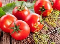 Have Tomatoes Boost Our Immunity System